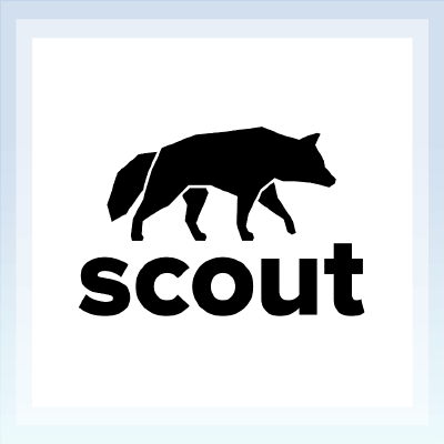 scout_review