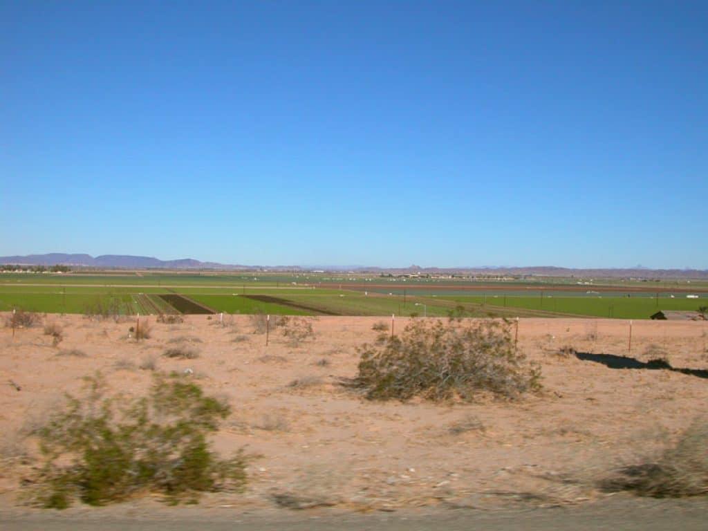 San Luis, Arizona - safest cities in arizona
